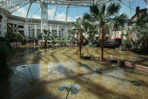 Inside the flooded Opryland Hotel Cascades